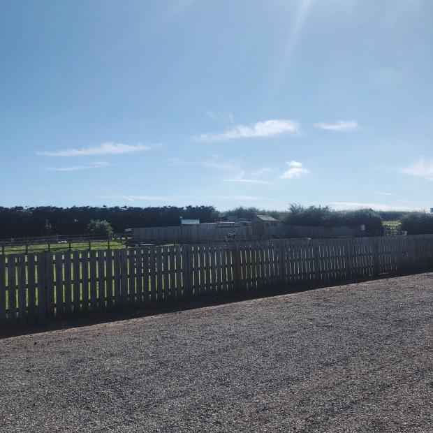 Farm sunny day