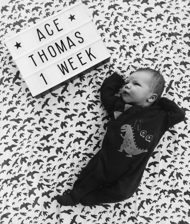 Baby boy milestone picture