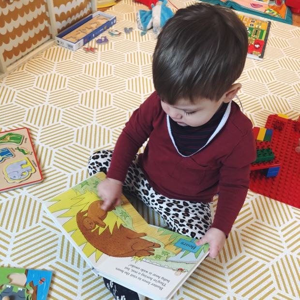 Baby reading books